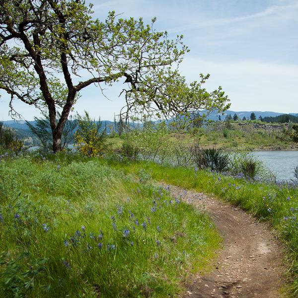 EasyCLIMB Trail