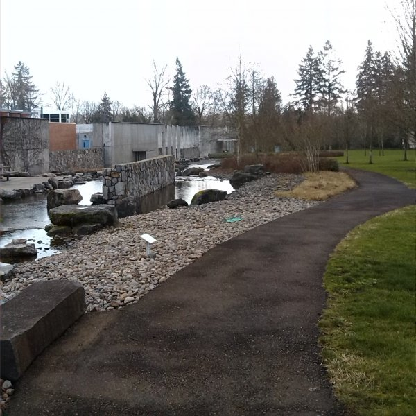 Oregon Runs Willamette River Water Treatment Plant Park