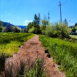 Rexius Trail