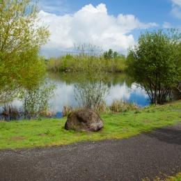 Salish Ponds