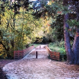 Willamette River Trail